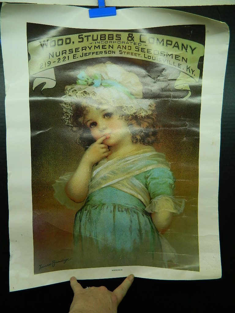 AA2226- Vintage Wood, Stubbs & Company 'Nurserymen and Seedsman' Bonnie Blue Rolled Up Paper Advertisement Poster 17.5 x 22.5 Inches