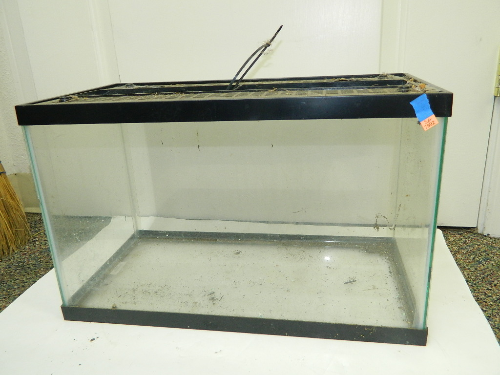 SG7992- Small Glass Fish Tank Aquarium w. Lid Needs Cleaned Minor Chip on Side '12.75x10.5x20.25in'